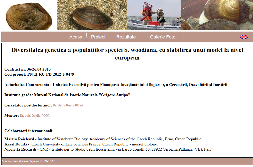 Proiect PN-II-RU-PD-2012-3-0479 - Contract nr. 36/26.04.2013  -  Population genetic history of the Sinanodonta woodiana invasion: expansion pattern across Europe